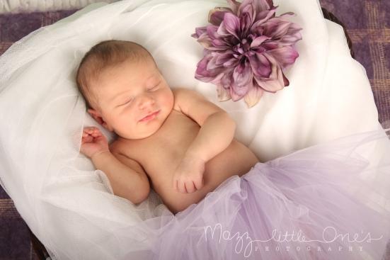 Lilac Tutu Princess