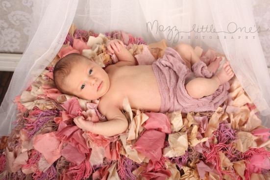 Ruffle Princess Canopy