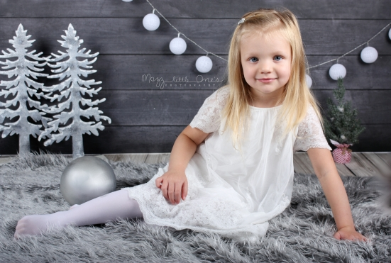 Holiday Mini 2015_0107 edited LOGO