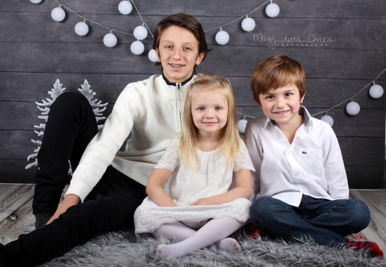 Holiday Mini 2015_0132 edited LOGO