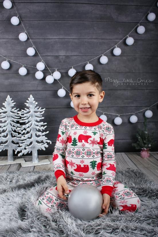 Holiday Mini 2015_0358 edited LOGO