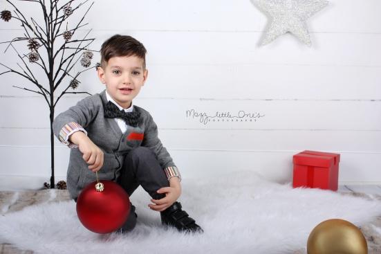 holiday xmas mini_1077 edited LOGO