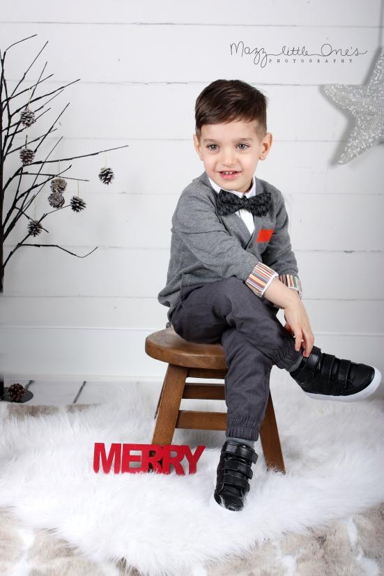 holiday xmas mini_1110 edited LOGO